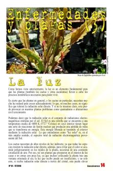 revista 80-página18