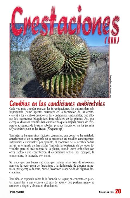 revista 80-página24