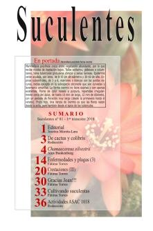 revista 80-página4