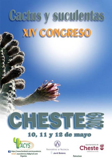 CHESTE-2019-cartel-maig